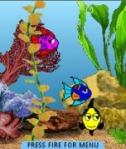 mobile aquarium