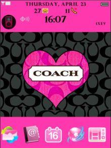 coach storm.jpg